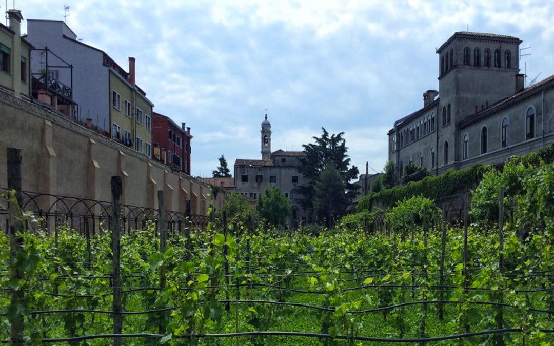 Giardino Mistico dei Carmelitani Scalzi a Venezia