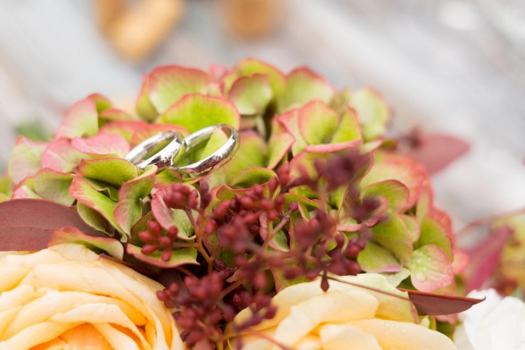 fedi nuziali adagiate su una ortensia verde e rose color pesca