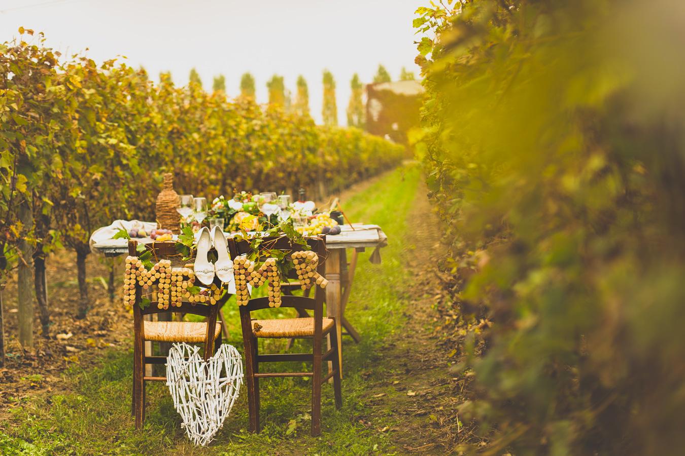 allestimento del tavolo degli sposi tra i filari della vigna
